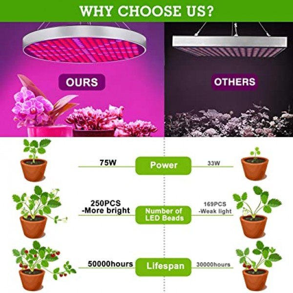 Shengsite 75W led grow light